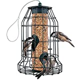 Squirrel Resistant Bird Feeders 22 oz. Large Bird Feeder with 4 Perches For Small Backyard Birds ONLY. Bird Feeder Squirrel Proof / Chew Proof / Rustproof. Fill with Wild Bird Seed for Outside Feeders