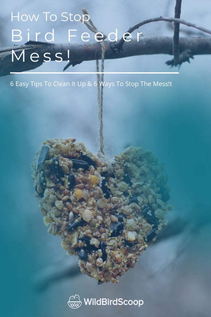 Bird Feeder Mess