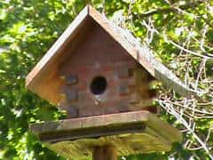 Single Unit rustic Bird House with trees in background.