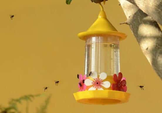 A picture of several bees swarming around a hummingbird feeder.