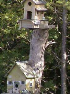 Two bird houses on a cut down tree stump. One higher up than the other.