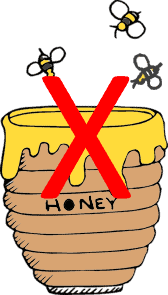 honey is not good hummingbird food