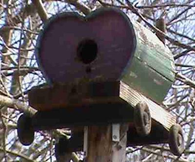 A bird house that looks like a barrel on a cart with holes cut out on the end for the bird to get inside the barrel. Sitting on a 2x4 post.