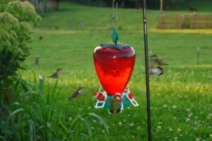 A picture of several hummingbirds flying around a hanging hummingbird feeder.