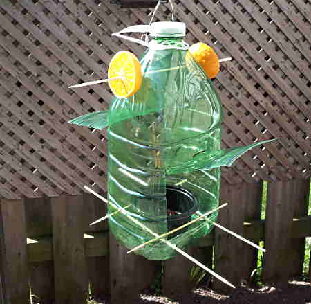 A green plastic bottle with skewers as perches and orange holders.
