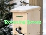 Roosting Box
