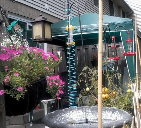 variety-of-summer-bird-feeders-to-attract-many-birds