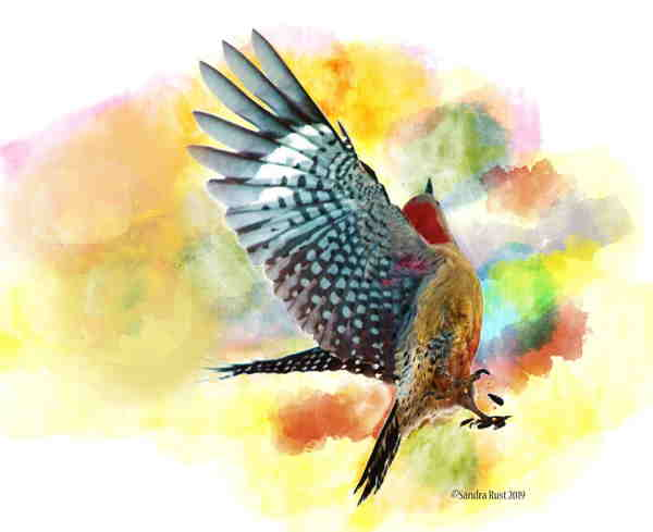 An art piece of a flying bird with a yellow background.