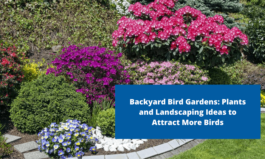 "A picture of a garden with different flowers and shrubs. Text reads ""Backyard Bird Gardens: Plants and Landscaping Ideas to Attract More Birds"""